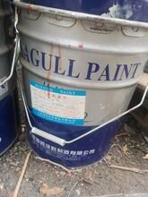 上海哪里回收庫存油漆圖片