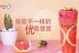 coco奶茶加盟對于未來餐飲行業的幾個預判!