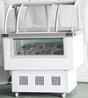 商用豪华冰激凌冰箱机器硬质冷冻柜工厂冰淇淋雪糕冰棒展示柜
