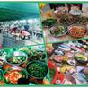 深圳农家乐一日游推荐乐湖生态园公司团建、家庭聚会、野炊休闲好去处