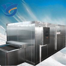 速冻机隧道式果蔬低温食品速冻机速冻食品系列设备图片