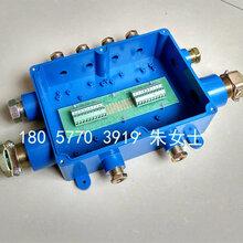厂家直销矿用本安电缆接线盒JHH-10(A)50对煤矿防爆接线盒图片