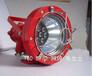 隔爆型LED防爆灯,矿用投光灯,防爆射灯。DGS24/127L(A)LED防爆灯