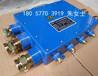 JHH-10(B)10通100對本安電路用接線盒電話分接盒