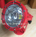 DGS100/127L矿用隔爆型LED投光灯,煤矿专用防爆投光灯