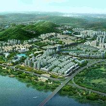 秦皇岛编写可行性研究报告的单位-花卉茶旅项目立项报告