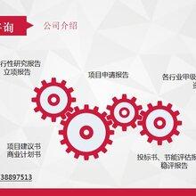 万年县专业编写政府立项报告的-万年县撰写可行性报告