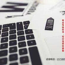薛城区专业编写政府立项报告的-薛城区撰写可行性报告