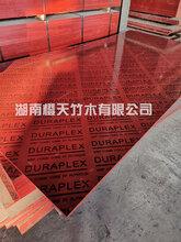 橋梁竹膠板—橋梁竹膠板規格,橋梁竹膠板價格,橋梁模板鏡面竹膠圖片
