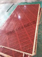 湖南竹膠板橋梁專用橋梁板鏡面橋梁板高密度覆膜板全竹圖片
