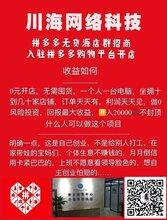 徐州拼多多群控软件招商加盟,小象店群软贴牌无限开运营教学