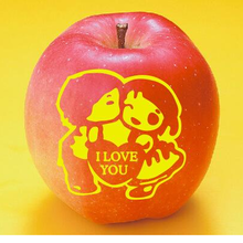 湖南單色印刷蘋果印字機水果蛇果可食用油墨半自動移印機
