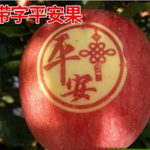 節日定制圣誕蘋果優選水果印字油墨東北平安果油墨食用墨水墨
