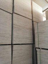 山东佳特林销售价格低质量好的多层胶合板图片