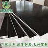 星冠木业建筑模板覆膜模板防水性能好不开胶不起层