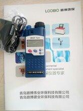 淄博LB-A型二氧化碳检测仪