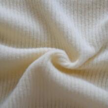 潍坊32s有机棉罗纹针织面料有机棉拉架罗纹布秋冬女装打底衫面料图片