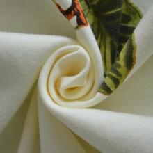 潍坊40s匹马棉平纹丝光针织面料吸湿排汗透气T恤运动服针织布图片