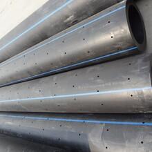 葫芦岛园林灌溉PE打孔渗滤管价格行情图片