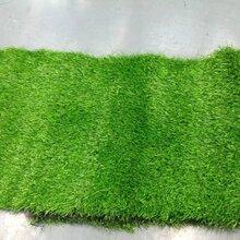 北京卖假草坪厂塑料草坪厂家