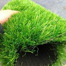 北京假草坪哪有卖的仿真草坪价格