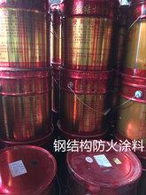 钢结构防火涂料室内室外厚型薄型钢结构防火涂料厂家直销图片
