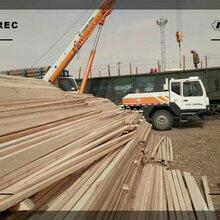 葫芦岛建筑木方图★片