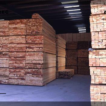 白山市木方加工哪里去批发