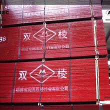 沧州市樟松烘干板哪里便宜图片
