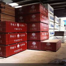 辽阳市樟松烘干板厂家地址图片