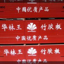 沧州市建筑木方加工在哪里图片