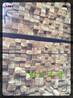 榆林木材市场