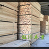 商洛建筑木材批发厂家