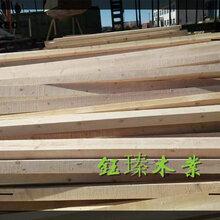 通辽SPF木方木材板材方木供应商图片