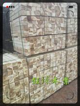 阜新SPF木方木材板材方木圖片