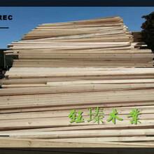 盤錦市木托盤木材板材方木報價圖片