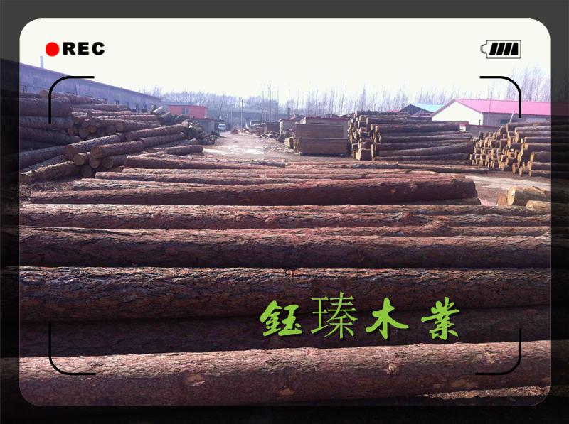葫芦岛铁杉木方木材板材方木加工厂批发