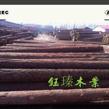 通辽市落叶松木方木材板材方木报价图片