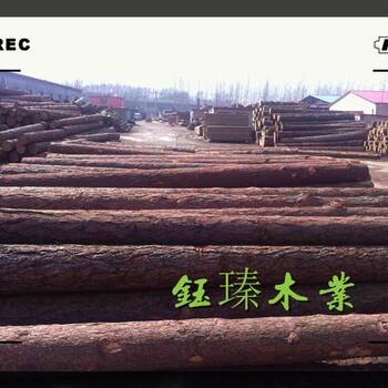 汉中工程木方加工厂家