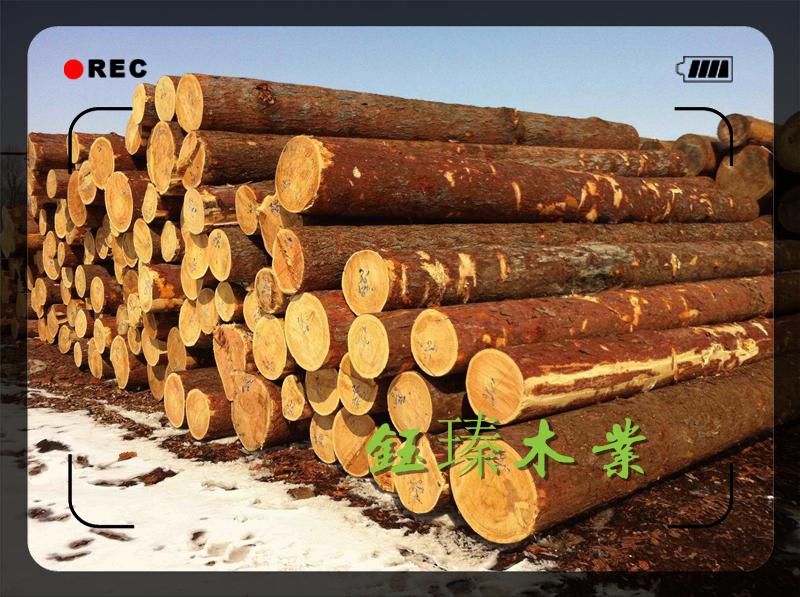 长春市白松木方木材板材方木报价