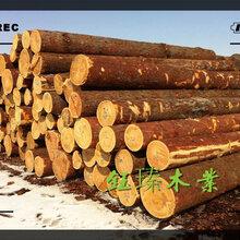 朝阳红松木方木材板材方木加工价格图片