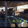 通化木托盘木材板材方木批发
