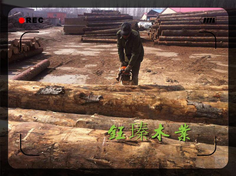 营口落叶松木方木材板材方木加工厂批发