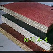 通化木板材市場圖片
