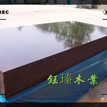 葫蘆島市鋼木模板市場圖片