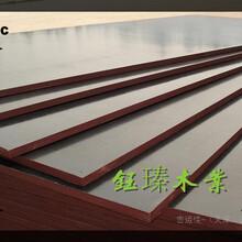邯鄲市承臺木模板市場圖片