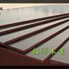 通化市圆柱木模板