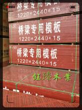邯鄲市鋼木模板市場圖片
