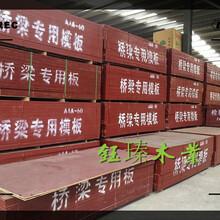 白山市復合木模板市場圖片