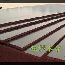 辽源建筑竹胶模板价格图片
